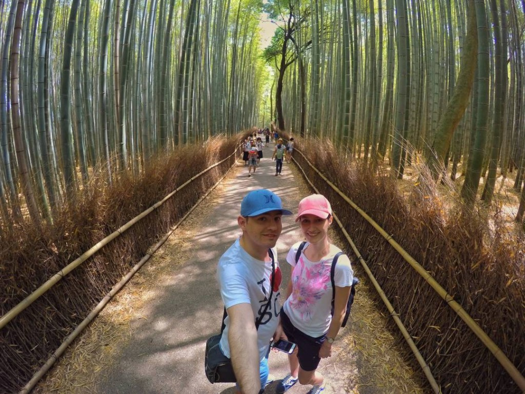 Arashiyama bamboo grooves, Kyoto