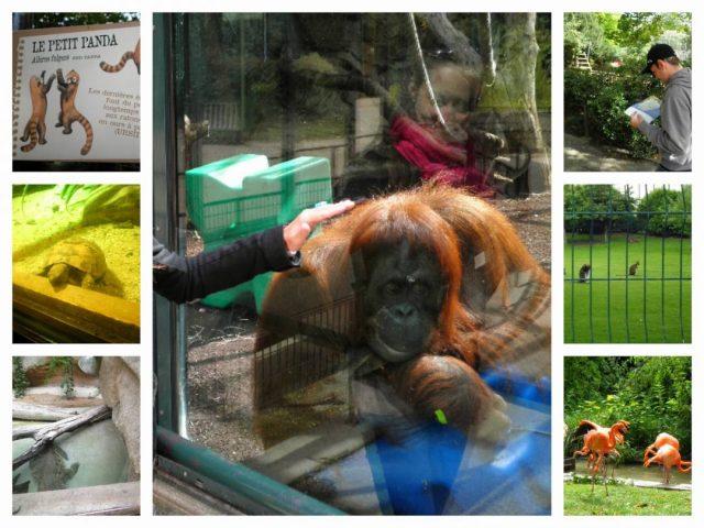 Zoo paríž