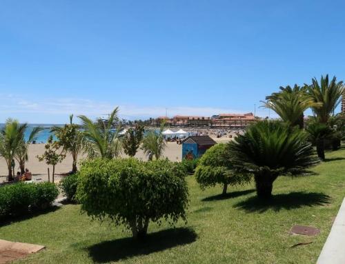 VIDEO: Tenerife, Kanárske ostrovy